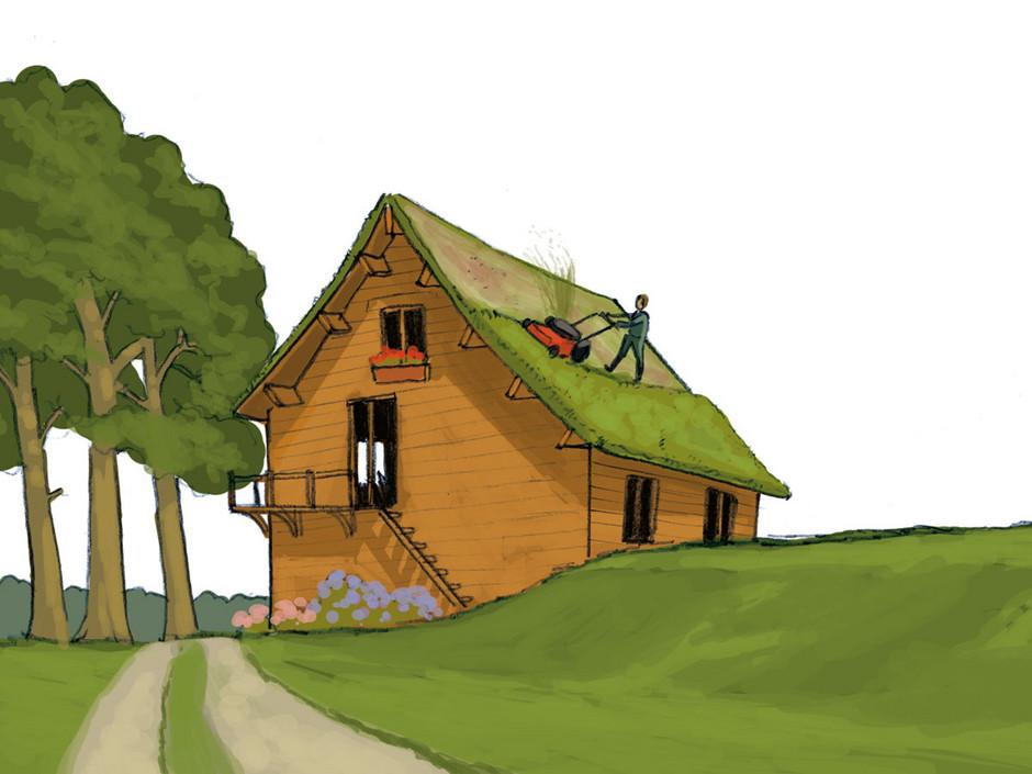 les toitures v g talis es r duisent les consommations d nergie de climatisation et de chauffage. Black Bedroom Furniture Sets. Home Design Ideas